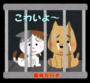 pet_syobun3