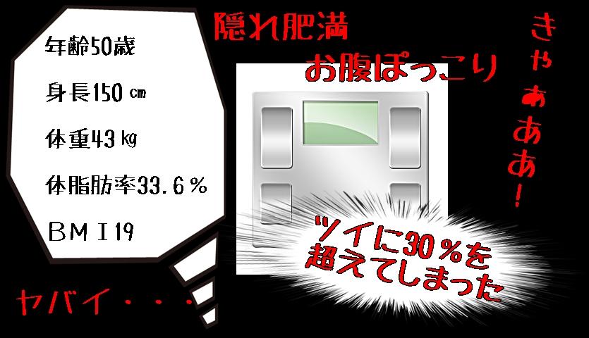 %e9%9a%a0%e3%82%8c%e8%82%a5%e6%ba%80