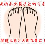 足の爪の長さと切り方!正しい方法を知ればトラブル知らず
